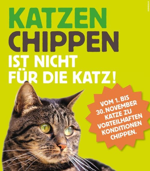 Csm 2017 Katzenchip Aktion DE 57412ef2e71